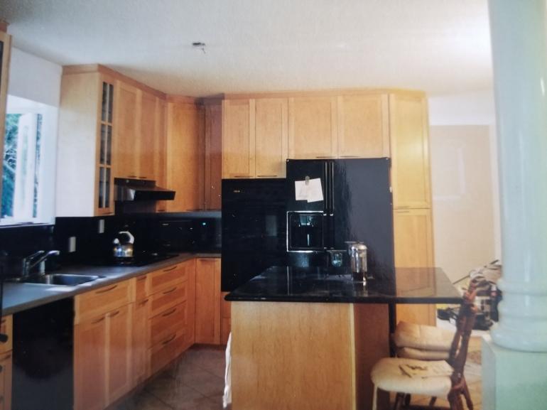 Shaker Kitchen Cabinets Doors
