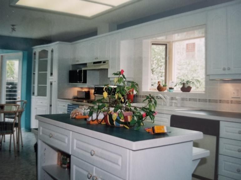 Custom Door And Drawers Cabinet
